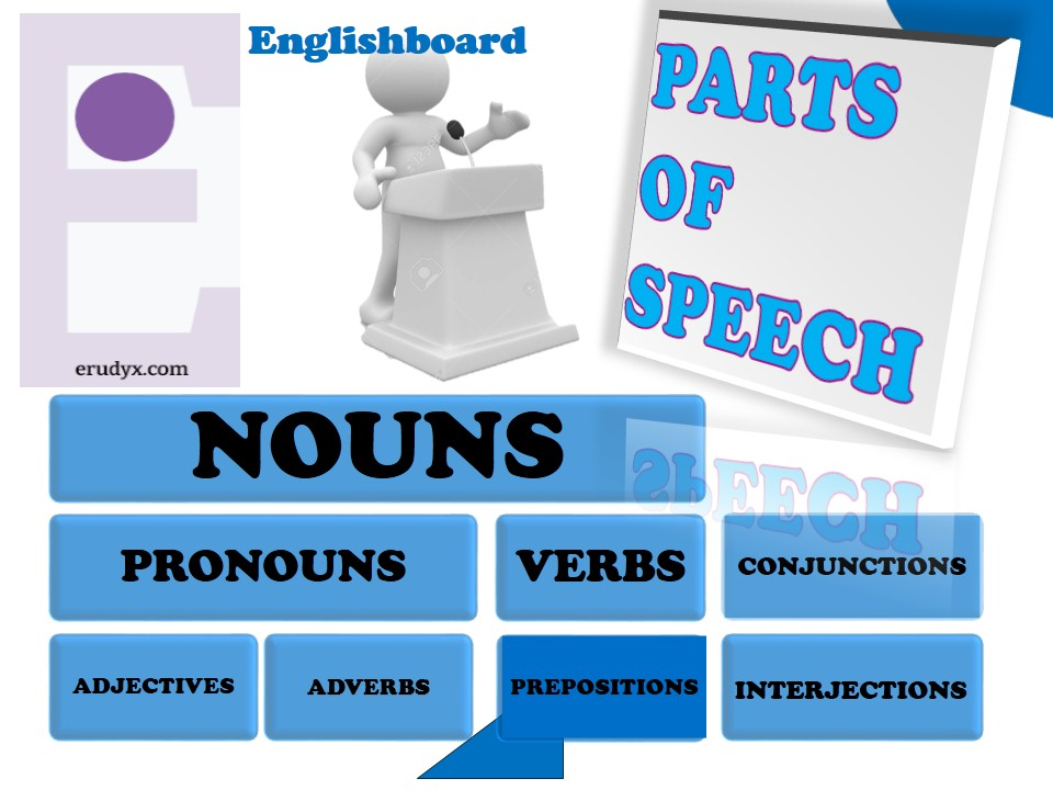 Nouns in english: function and usage