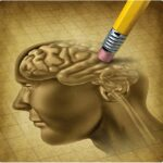 La maladie d'Alzheimer : ce qu'il ne faut pas oublier