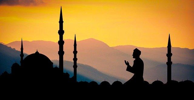 Miel amer d'Aqrad