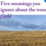 """Five (05) meanings that you ignore about the word """"field"""""""